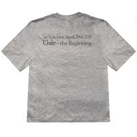 HIRO 1st Solo Live 『Gale』~the Beginning~ GaleロゴTシャツ(グレー)