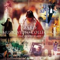 ZARD MUSIC VIDEO COLLECTION〜25th ANNIVERSARY〜【DVD5枚組】